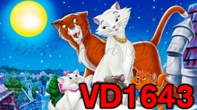 VD1643 - PISICILE ARISTOCRATE
