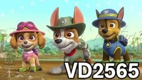 vd2565 - patrula